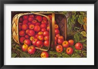 Framed Country Apples