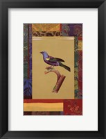 Framed Blue Green Tanager