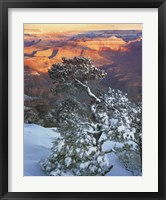Framed Grand Canyon Sunrise