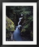 Framed Avalanche Creek