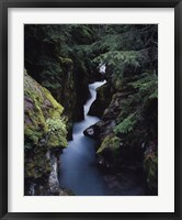 Framed Avalanche Creek