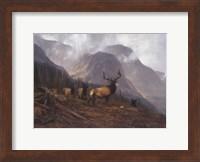 Framed Bookcliffs Elk