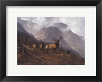 Framed Bookcliffs Elk