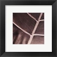 Framed Particular