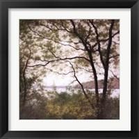 Framed Lakeside Trees I
