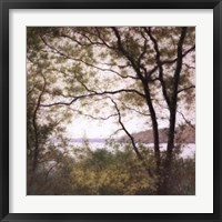Framed Lakeside Trees I