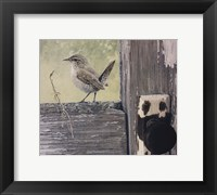 Framed House Wren