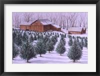 Framed Xmas Tree Farm