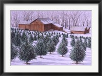 Framed Xmas Tree Farm