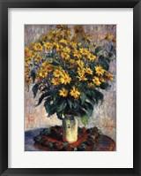 Framed Jerusalem Artichoke Flowers, 1880