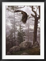 Framed Shrouded Forest (detail)