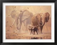 Framed African Elephants and Namaqua Doves