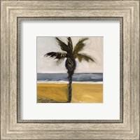 Framed Along the Coast IV 12x12