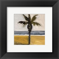 Framed Along the Coast IV 12x12