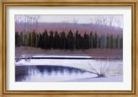 Framed Cedars and Brook - Winter