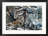 American Winter Sports Framed Print
