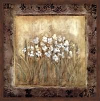 Framed Narcissus