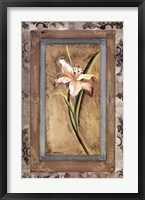 Framed Day Lily I