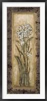 Framed Paperwhites II