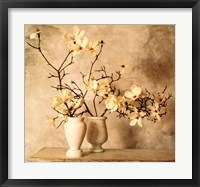 Framed Magnolia Branches