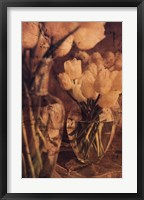 Framed Antique Tulips I