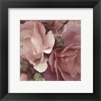 Framed Parfum II
