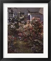 Framed Backyard Garden