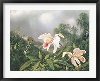 Framed Jungle Orchids and Hummingbirds