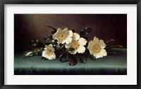 Framed Four Cherokee Roses
