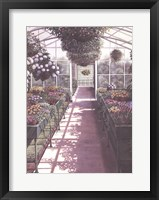 Framed Greenhouse Effect