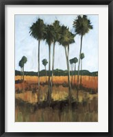 Framed Tall Palms II