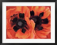 Framed Oriental Poppies, 1928
