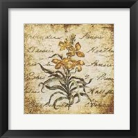 Framed Yellow Petit Botanical