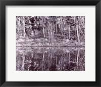 Framed Winter Reflections