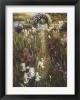 Inviting Path Framed Print
