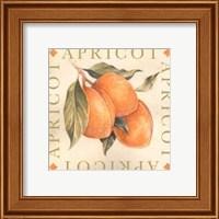 Framed Apricot