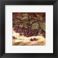 Framed Blackberries