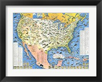 Framed Outdoor Life Sportsmen's Fish Map