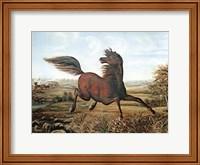 Framed Neigh of an Iron Horse