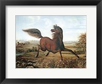 Framed Neigh of an Iron Horse