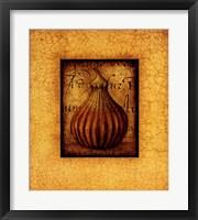 Framed Terra Fig