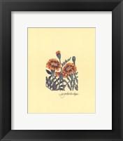 Framed Marigolds