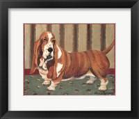 Framed Bassett Hound