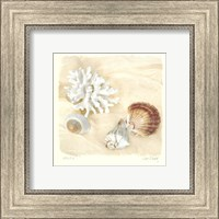 Framed Shells IV