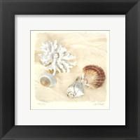 Framed Shells IV