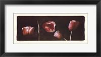 Framed Illuminating Tulips I