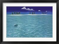 Turtle Crossing Framed Print