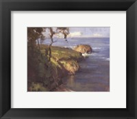 Framed Point Lobos