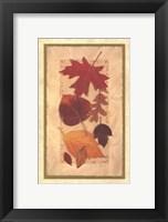 Framed Autumn Harvest II