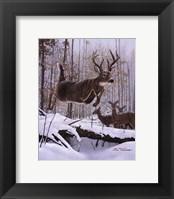 Framed Leaping Deer